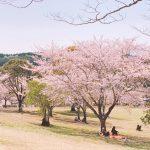 平成から令和へ〜世界でもっとも古い歴史を持つ国の1つ日本